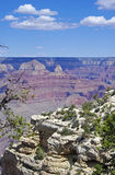 Looking Out over the Grand Canyon Stock Image