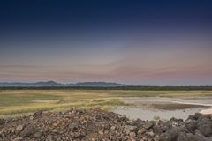 Looking Out Over the Grasslands of the Columbia River Delta Stock Image