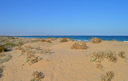Looking Out To Sea Over The Sand Dunes. Royalty Free Stock Photos