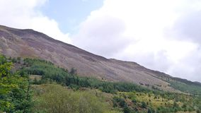 Looking over forests to hill covered in screen and rock. Widescreen looking across forest area in the Ennerdale valley to the side of High Crag area which has stock photos