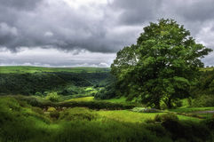 Looking over the Gwaun Valley Royalty Free Stock Images