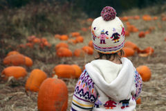 Looking Over Pumpkin Patch #1. Baby looking over her choices at a pumpkin patch Royalty Free Stock Image