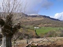 Looking over to houses in Borrowdale Royalty Free Stock Image