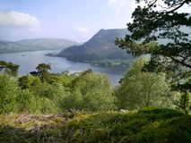 Looking over trees to Ullswater, Lake District Stock Photos