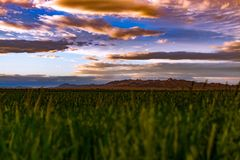 Looking past the fields onto the colorful clouds. Stock Photos