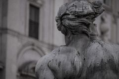 Looking piazza Navona royalty free stock image