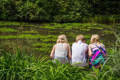 Looking into Pond Royalty Free Stock Photography