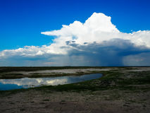 Looking at raining cloud from afar with blue sky background and. Water reflection during game drive in Chobe national park Stock Photos