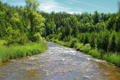 Looking at a river downstream Royalty Free Stock Photo