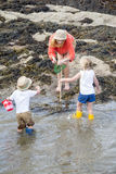 Looking in Rock Pools Royalty Free Stock Photo