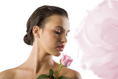 Looking the the rose Royalty Free Stock Image