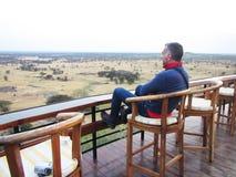 Looking savanna Royalty Free Stock Image