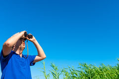 Looking for something in the sky. Looking for something in the blue sky Stock Photos