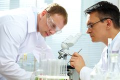 Looking at specimen. Scientist looking at specimen while his assistant helping him Stock Photography