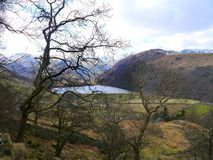 Looking though trees to Brothers Water, Lake District Royalty Free Stock Images
