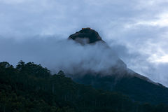 Looking towards the summit of Adam's Peak (Sri Pada) in Sri Lanka. Stock Photo