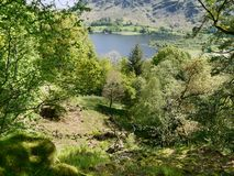 Looking through trees to Ullswater, Lake District Royalty Free Stock Images