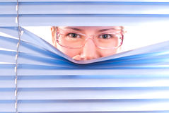 Looking trough blinds Royalty Free Stock Image