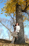 Looking Up. Girl posing next to tree in the fall Stock Image