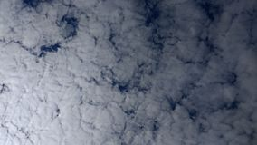 Looking up - Blue Sky -fluffy clouds all the way Stock Photos