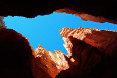 Looking up in Bryce Canyon Royalty Free Stock Images