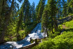 Umbrella Falls Mt. Hood National Forest. Looking up at the cascading waters of Umbrella Falls in Mt. Hood National Forest in Oregon Royalty Free Stock Photography