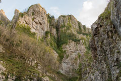 Looking up at cliffs of Cheddar Gorge. High limestone cliffs in canyon in Mendip Hill in Somerset, England, UK Stock Photos