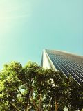 Looking up in DTLA Royalty Free Stock Photo