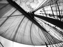 Looking up at full sails Stock Images