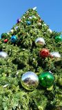 Looking up a giant Christmas tree stock photography