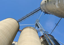 Looking up at grain elevators and bins Stock Images