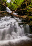 Looking up Huron Falls, in Glen Leigh, Ricketts Glen State Park Royalty Free Stock Image