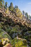 Looking up at rocky cliffs and rock slide, Brandywine Falls Royalty Free Stock Photo