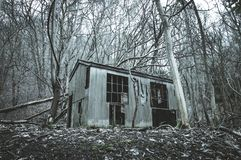 Looking up at an spooky abandoned barn in a the middle of a forest in winter, with a moody edit.  royalty free stock photo