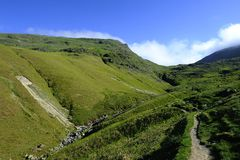 Looking up Tongue Gill Stock Images