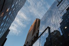 Looking up and View of office buildings in the New York City royalty free stock photos