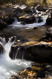 Looking upstream in gunshot. A creek in colorado in fall with waterfalls Stock Photography