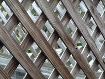 Looking Through. Weather worn lattice on a deck to see scuttle greenery in the diamond pattern Stock Photography