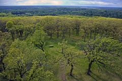 Looking west from tower at Lapham Peak Royalty Free Stock Photography