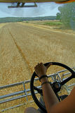 Looking at the wheat field from the interior of the harvester. Harvest a dry summer day stock photos