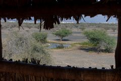 Looking through the wildlife and bird observation tower or blind in the desert of the United Arab Emirates out to the grassland, r stock photography