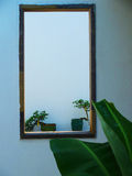 Looking through the window. A window framing 2 bonsai plants Royalty Free Stock Images