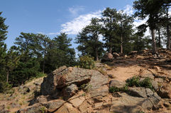 Lookout. Forested mountain lookout, Denver, Colorado Stock Photo