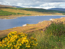 Lookout over Loch Ness, Scotland Royalty Free Stock Photography