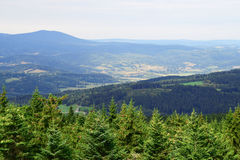 Lookout in Sumava national park Stock Photography