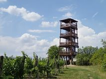 Lookout tower besides the wineyard Royalty Free Stock Photos