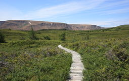 The Lookout Trail with Tablelands Stock Images
