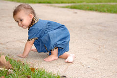 This Looks Good. A cute little crawling outdoorswearing a denim outfit trimmed in leopard print Royalty Free Stock Images