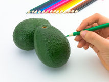 Looks like drawing fruits and vegetables on white background. Stock Images