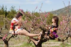Looks like geisha sit on the tree Royalty Free Stock Image